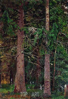 Ivan Shishkin | Spruce Forest, c.1889/90