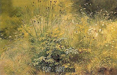 Herbs, 1892 | Ivan Shishkin | Painting Reproduction
