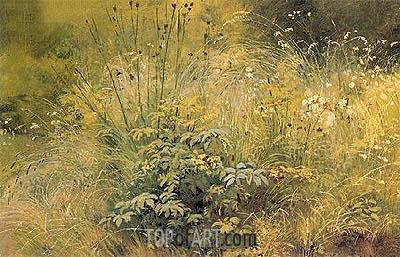 Ivan Shishkin | Herbs, 1892
