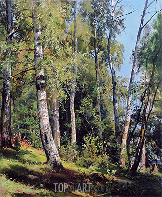 Birch Grove, 1896 | Ivan Shishkin | Painting Reproduction