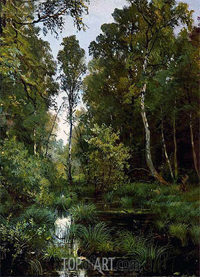 Ivan Shishkin | Overgrown Pond at the Edge of the Forest (Siverskaya), 1883