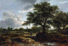 Landscape with a Village in the Distance, 1646 by Ruisdael | Painting Reproduction