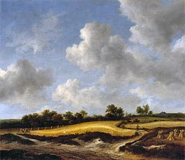 Landscape with a Wheatfield, c.1655/65 by Ruisdael | Painting Reproduction