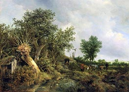 Landscape with a Hut, 1646 by Ruisdael | Painting Reproduction
