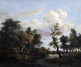 A Wood Scene, 1649 by Ruisdael | Painting Reproduction