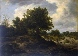 Landscape with a Traveller, c.1650 by Ruisdael | Painting Reproduction