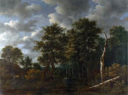 A Pool Surrounded by Trees, c.1665 by Ruisdael | Painting Reproduction