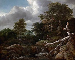 Forest Scene, c.1655 by Ruisdael | Painting Reproduction