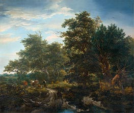 Forest Landscape, 1653 by Ruisdael | Painting Reproduction