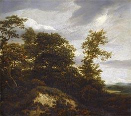 A Wooded Dune Landscape | Ruisdael | Gemälde Reproduktion