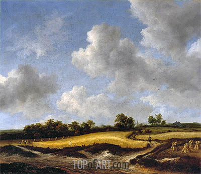 Landscape with a Wheatfield, c.1655/65 | Ruisdael| Painting Reproduction