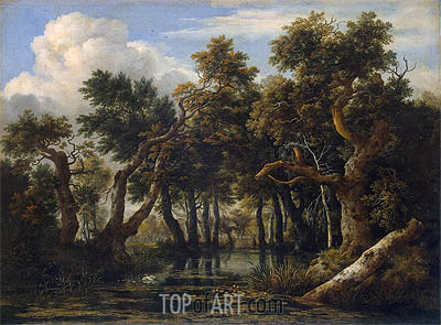 Ruisdael | Marsh, c.1660/70