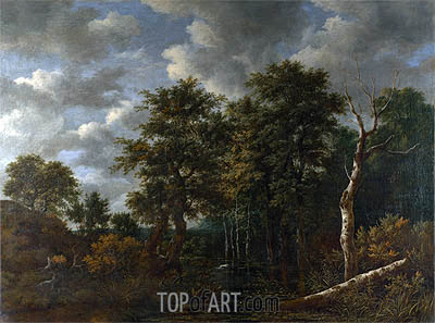 A Pool Surrounded by Trees, c.1665 | Ruisdael | Painting Reproduction