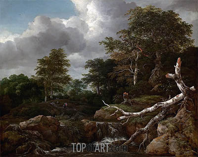 Forest Scene, c.1655 | Ruisdael| Painting Reproduction