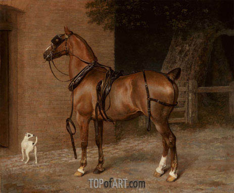 A Carriage Horse, undated | Jacques-Laurent Agasse | Painting Reproduction