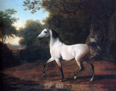 A Grey Arab Stallion in a Wooded Landscape, undated | Jacques-Laurent Agasse | Gemälde Reproduktion