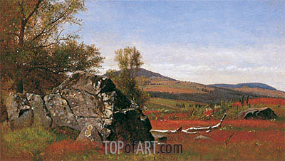 James McDougal Hart | Summer in the Catskills, c.1865