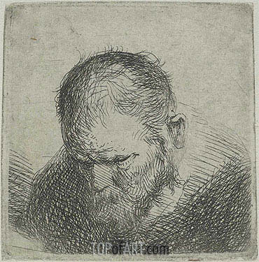 Bearded Man Looking Down, c.1631 | Jan Lievens | Painting Reproduction