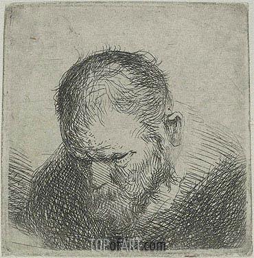 Jan Lievens | Bearded Man Looking Down, c.1631