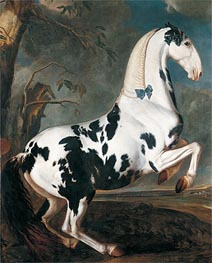 The Piebald Stallion at the Eisgruber Stud, 1700 by Johann Georg Hamilton | Painting Reproduction
