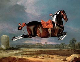 The Piebald Horse 'Cehero' Rearing | Johann Georg Hamilton | Painting Reproduction