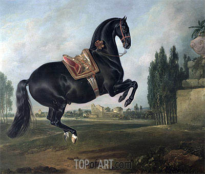 A Black Horse Performing the Courbette,  | Johann Georg Hamilton | Painting Reproduction