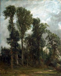 Trees at Hampstead | Constable | outdated