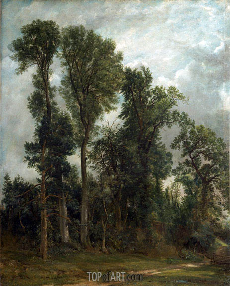 Constable | Trees at Hampstead, 1821