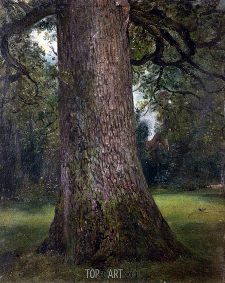 Study of the Trunk of an Elm Tree, c.1821 | Constable | Painting Reproduction