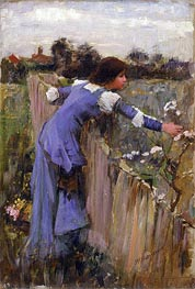 The Flower Picker, c.1900 by Waterhouse | Painting Reproduction