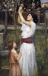 Gathering Almond Blossoms, 1916 by Waterhouse | Painting Reproduction
