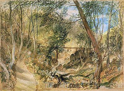 J. M. W. Turner | The Woodwalk, Farnley Hall, c.1818
