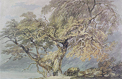 A Great Tree, c.1796 | J. M. W. Turner| Painting Reproduction