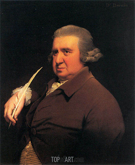 Portrait of Erasmus Darwin, c.1792/93 | Wright of Derby | Painting Reproduction