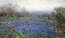 Bereich der blaue Wiesenlupine, undated | Julian Onderdonk