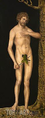 Lucas Cranach | Adam, 1537