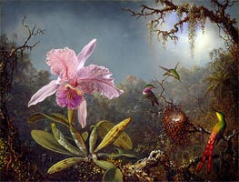 Cattleya Orchid and Three Brazilian Hummingbirds, 1871 by Martin Johnson Heade | Painting Reproduction