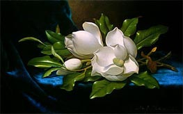 Giant Magnolias on a Blue Velvet Cloth, c.1890 by Martin Johnson Heade | Painting Reproduction