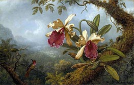 Orchids and Hummingbird, c.1875/83 by Martin Johnson Heade | Painting Reproduction
