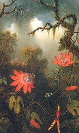 Two Hummingbirds Perched on Passion Flower Vines, c.1870/83 by Martin Johnson Heade | Painting Reproduction
