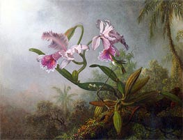 Pink Orchids and Hummingbird on a Twig, 1875 by Martin Johnson Heade | Painting Reproduction