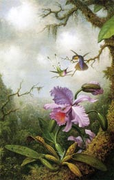 Two Hummingbirds with a Pink Orchid, c.1875/90 by Martin Johnson Heade | Painting Reproduction