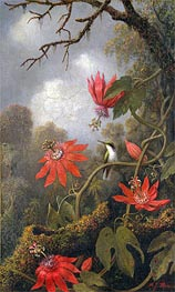 Hummingbird and Passionflowers, c.1875/85 by Martin Johnson Heade | Painting Reproduction