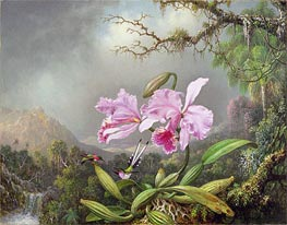 Study of an Orchid, 1872 by Martin Johnson Heade | Painting Reproduction
