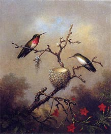 Ruby-Throated Hummingbird, c.1864/65  by Martin Johnson Heade | Painting Reproduction