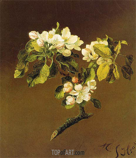 A Spray of Apple Blossoms, 1870 | Martin Johnson Heade | Gemälde Reproduktion