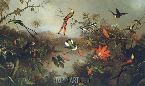 Martin Johnson Heade | Tropical Landscape with Ten Hummingbirds, 1870