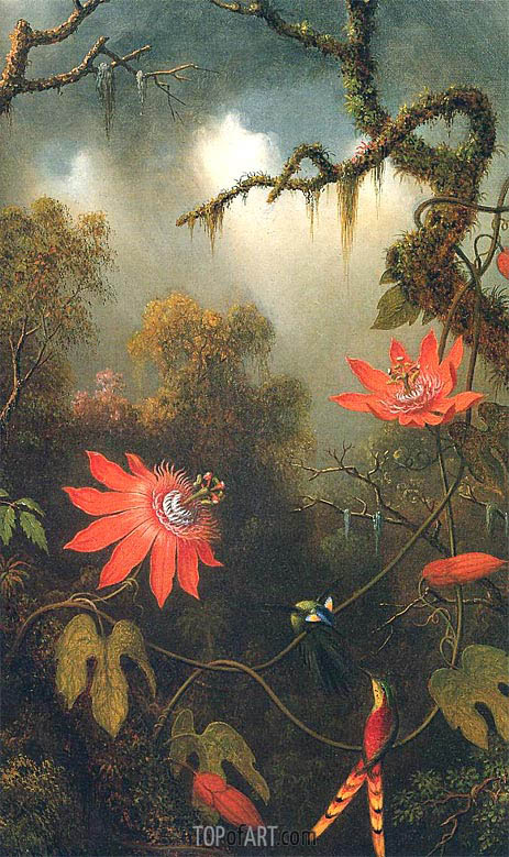 Martin Johnson Heade | Two Hummingbirds Perched on Passion Flower Vines, c.1870/83