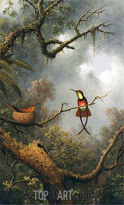 Martin Johnson Heade | Crimson Topaz Hummingbirds Nesting in a Tropical Forest, c.1870/83