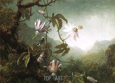 Martin Johnson Heade | Hummingbird Pearched near Passion Flowers, c.1870